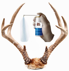 deer_antler_spray_pic