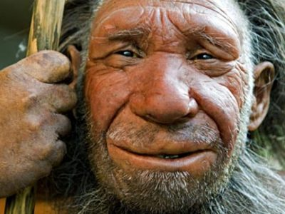 neanderthal_elderly