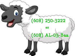 sheep number